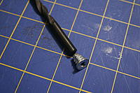 Name: _MG_0029.jpg