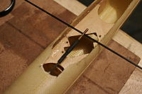 Name: _MG_0103.jpg