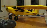 Name: painted_cub.jpg