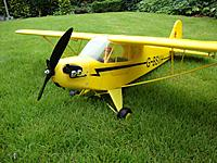 Name: TreeDiver_1meter_Piper_p01.jpg Views: 203 Size: 174.6 KB Description: Outside on grass...and grass does show how small this plane is :)