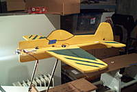 Name: Yak 55 011.jpg