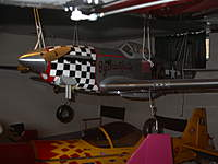 Name: giaant p51.jpg