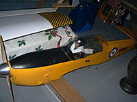 Name: oh rc chipmunk.jpg