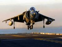 Name: harrier hover.jpg