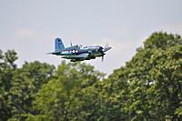 Name: Whitman Scale Funfly Jun 2013 (278).jpg Views: 118 Size: 57.0 KB Description: