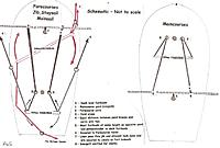 Name: 6. Sheeting schematic - not to scale.jpg Views: 73 Size: 48.0 KB Description: