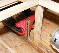 Name: pri20120503a.jpg