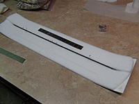 Name: cub 016.jpg