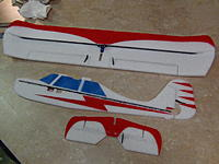 Name: cub 018.jpg