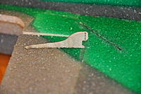 Name: DSC_0098.jpg