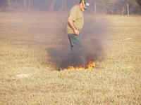 Name: PC300078.jpg