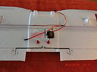 Name: CIMG4745 (Copy).JPG
