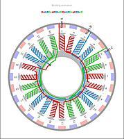 Name: 24N28P_AabBCcaABbcCAabBCcaABbcC_Y.jpg Views: 32 Size: 57.3 KB Description: 24N28P AabBCcaABbcCAabBCcaABbcC wind terminated Wye