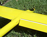 Name: YellowBlueGrass5.jpg
