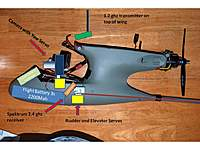 Name: Corvid Dissection.jpg