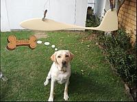 Name: dogBone.jpg Views: 64 Size: 81.8 KB Description:
