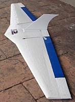 Name: Bat4.jpg