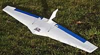 Name: Bat5.jpg