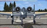 Name: a-10 ready.jpg Views: 42 Size: 78.0 KB Description: Nose Shot