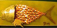 Name: ledfish2_cc.jpg Views: 80 Size: 45.9 KB Description: Fish-head!
