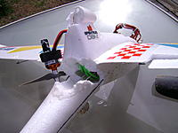 Name: DSC01375.jpg