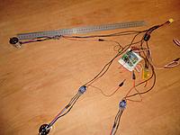 Name: tri_wiring-9.jpg Views: 132 Size: 223.9 KB Description: 50cm ruler added for comparison.