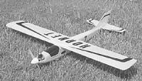 """Name: Hornet.jpg Views: 449 Size: 24.3 KB Description: HORNET, 37"""" span, about 220 squares"""