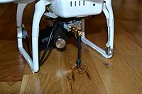 Name: DSC_3431.jpg
