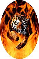 Name: Tiger Flames1.jpg Views: 59 Size: 58.5 KB Description: sharper, doctored up.
