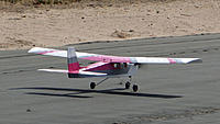 Name: DSC06451.jpg