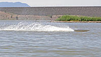 Name: DSC07221.jpg