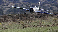 Name: DSC07997.jpg