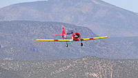 Name: DSC08300.jpg