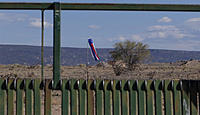 Name: DSC02114.jpg Views: 42 Size: 226.4 KB Description: The sock didn't attract much wind today.
