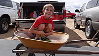 Name: DSC02450.jpg