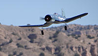 Name: DSC06304.jpg
