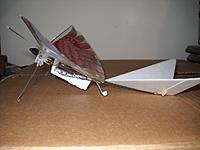 Name: Bird v5_side view_DSCN6189_042319.jpg