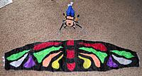 Name: DSCN8625_edited.jpg Views: 342 Size: 354.7 KB Description: Beautiful 1.5m Butterfly sail design and colors.