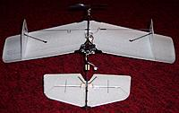 Name: Ember Canard_full flying_front inverted_021414.jpg