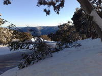 Name: 23072008279.jpg