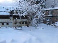 Name: IMG_0352.jpg Views: 177 Size: 106.2 KB Description: It's pretty in my backyard when it snows
