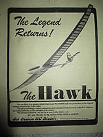 Name: HawkFlyer.jpg