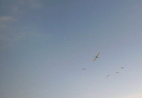 Name: Rotor-and-Seagulls.png