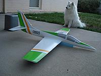 Name: DSC05446 (1024x768).jpg Views: 501 Size: 83.2 KB Description: Finished plane