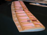 Name: foam blt up wing.jpg