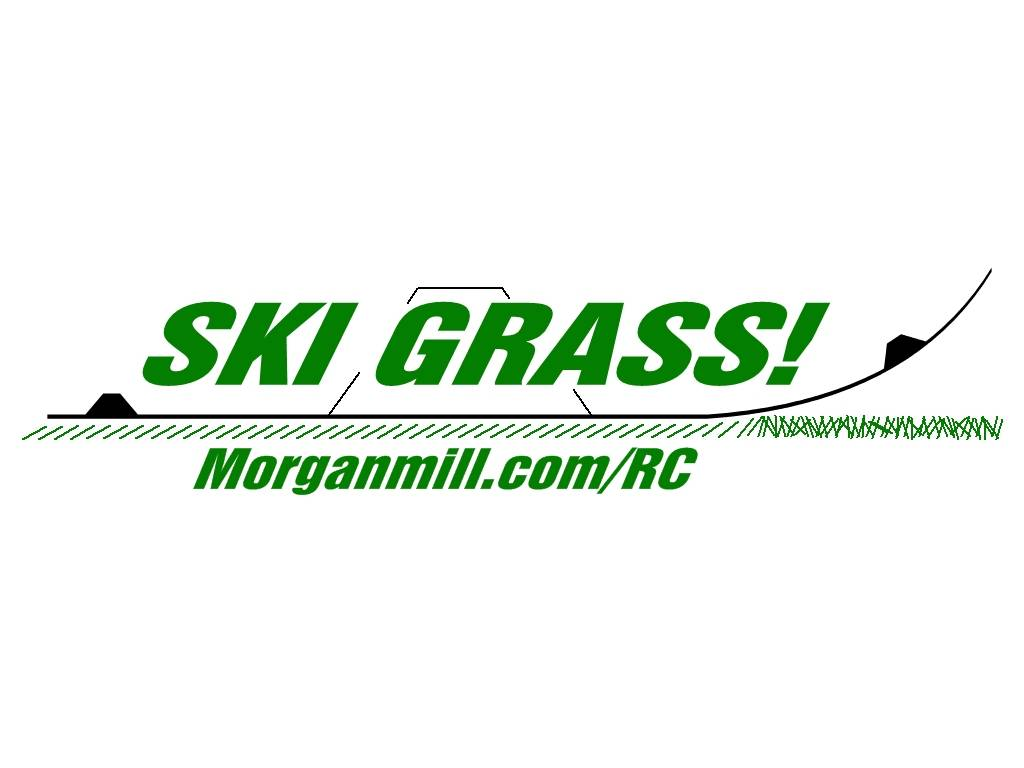 Name: SKI GRASS STICKER.jpg Views: 551 Size: 46.8 KB Description: