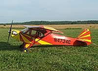 Name: DSCF6676.jpg Views: 464 Size: 118.4 KB Description: Bronco's cub!