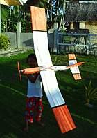 Name: Fubar1000.jpg Views: 268 Size: 99.4 KB Description: Angel holding up Fubar. circa: late 2008