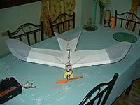 Name: Gull.jpg Views: 491 Size: 103.4 KB Description: