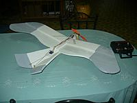 Name: Gull (5).jpg Views: 208 Size: 85.2 KB Description: